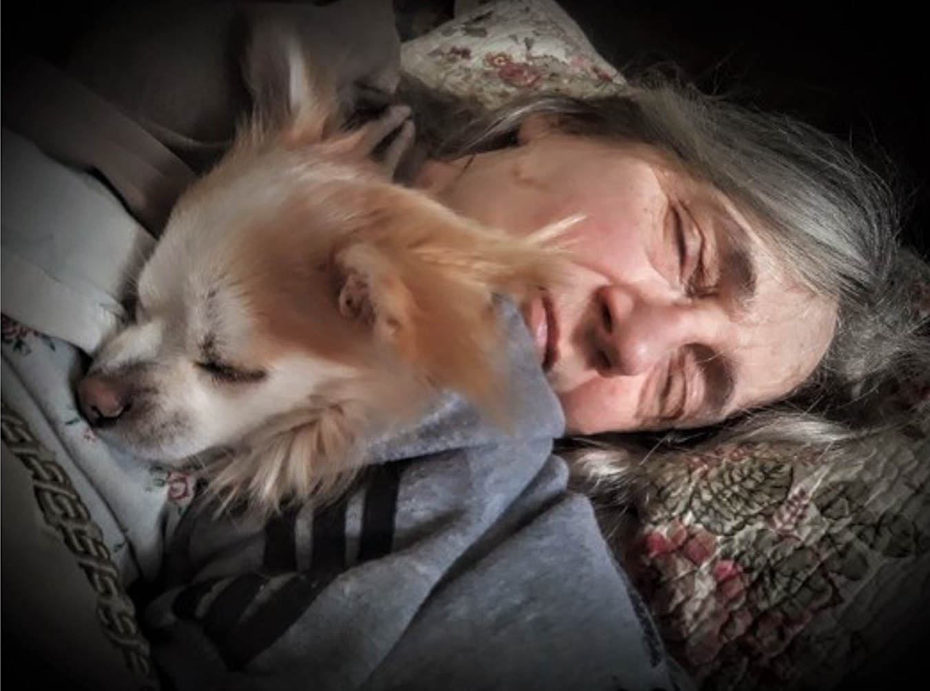 Digital close-up of a woman's face and small dog asleep.